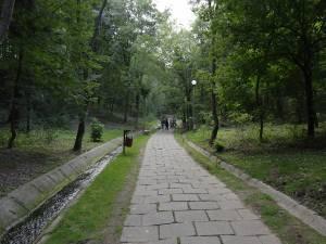 Parcul Șipote