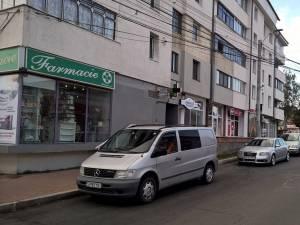 PSD Suceava critică faptul că pentru amenajarea unei parcări au fost tăiați mai mulți copaci