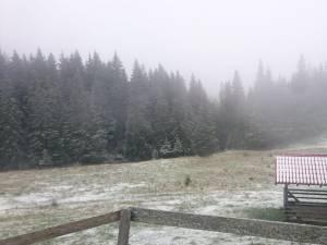 A căzut zăpada pe munte