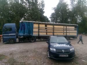 Trei transporturi ilegale de masă lemnoasă, depistate în zona Cornu Luncii