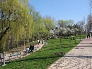 Zona de agrement a Sucevei