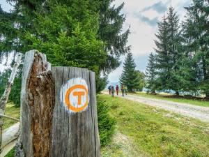 Traseul turistic Via Transilvanica va avea 200 de kilometri în judeţul Suceava