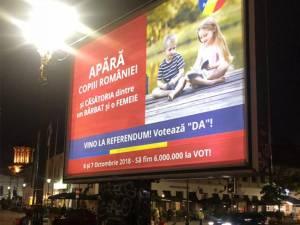 Panou electoral cu tricolor