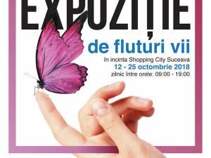 Expoziţie de fluturi tropicali vii, la Shopping City Suceava