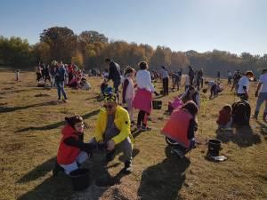 500 de voluntari, în special elevi, au plantat 5.000 de puieţi de salcâm şi paltin, pe o suprafaţă de 2,5 hectare de teren defrişat