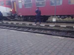 Trenul Câmpulung Moldovenesc – Ilva Mică, în stație la Iacobeni