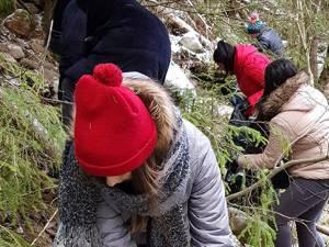 Acţiuni de igienizare şi refacere a marcajelor, desfăşurate de studenţii USV în Parcul Naţional Călimani