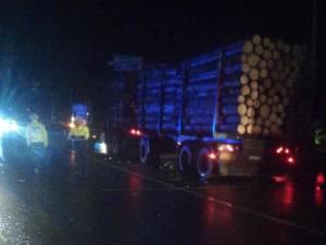 Vehiculul greu care transporta lemn