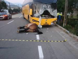 Accidentul s-a petrecut la finele lunii august a anului 2015, pe DN 17, care leagă Suceava de Ardeal, pe raza comunei Vama