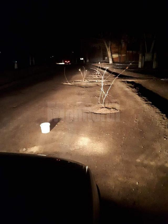 Gropi astupate cu pământ și crengi, pe strada principală din Mitocu Dragomirnei