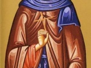 Sfântul Cuvios Timotei