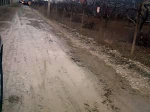 Strada Traian Popovici, una dintre zecile de străzi de pământ care urmează să fie asfaltate anul acesta