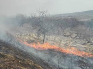 Incendiile de vegetație, o mare problemă în aceste zile