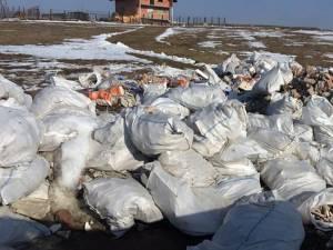 Un întreg deal din comuna Şcheia a fost transformat într-o adevărată groapă de gunoi