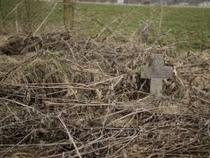 După iarnă au ieşit la iveală noi cruci, la marginea cimitirului din Siret. Foto: Ema Motrescu