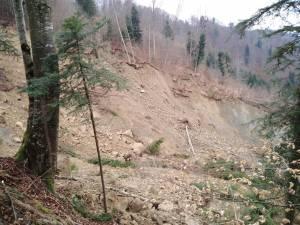 Alunecare de teren masivă în fondul forestier, în comuna Frumosu