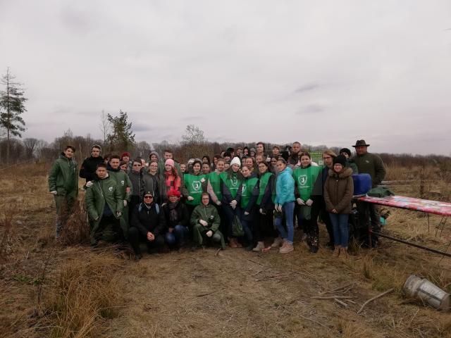 Elevii Școlii Gimnaziale Nr. 4 Suceava au plantat 1.000 de puieți la Todirești