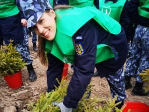 3.000 de  puieți de molid și de brad, plantați de Ziua Jandarmeriei, la OS Mălini