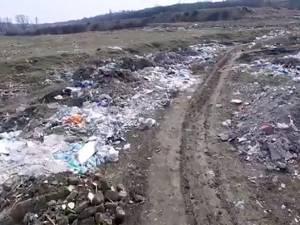 Groapa ilegală de gunoi de la Șcheia