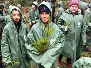 1.200 de puieţi de molid, brad şi larice, plantaţi de elevii din Stulpicani, Gemenea şi Ostra