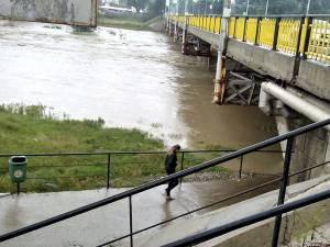 Cușnir atrage atenţia că pasajul este construit într-o zonă inundabilă