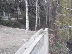 Un pârâu cu rahat curge liniştit în Şcheia