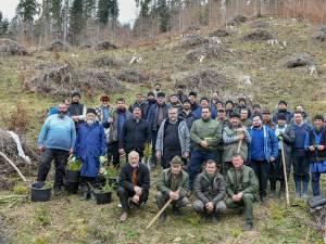 Preoţii din Protoieria Fălticeni au plantat 1.000 de puieţi de răşinoase