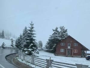 Ninge în zona de munte a județului Suceava