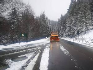 Ninsoare în zona de munte a județului Suceava