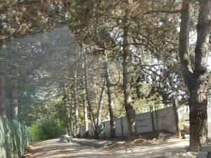 Vechiul gard al cimitirului Pacea