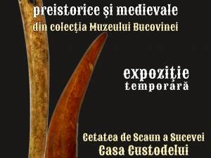 Obiecte din os și corn, preistorice și medievale, la Cetatea de Scaun a Sucevei