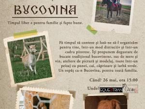 Ospăţ în Bucovina