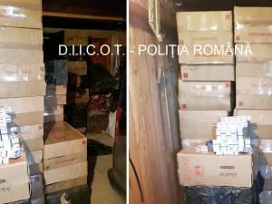 Ţigările găsite în garajul din Vicovu de Sus