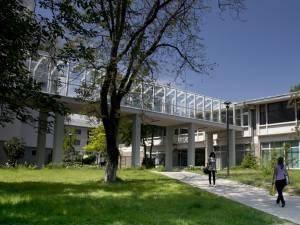 """Univesitatea """"Ștefan cel Mare"""" Suceava"""