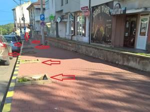 Cușnir a amintit că pe str. Petru Rareș au fost tăiaţi mai mulţi copaci pentru amenajarea de locuri de parcare