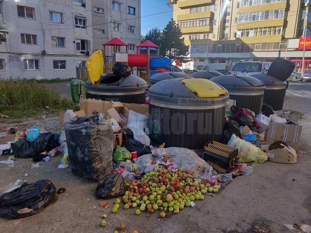 Camere video de supraveghere pentru punctele de colectare a deșeurilor, în Suceava