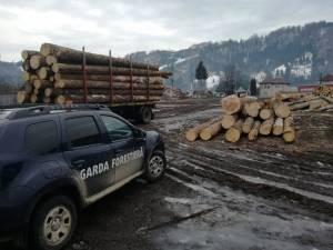 Sute de controale şi verificări efectuate de Garda Forestieră Suceava la Moldoviţa, în ultimii patru ani