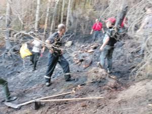 Incendiu puternic de vegetaţie uscată, la Poiana Micului