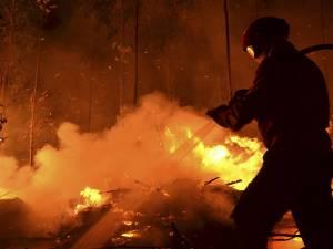 Incendiu de vegetaţie uscată