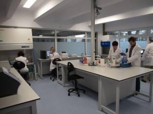 Laborator de biologie moleculară USV