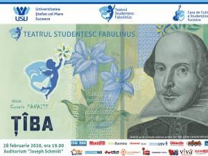 """Spectacolul """"Ţîba"""", cu teatrul """"Fabulinus"""", gratuit, pe scena Universității"""