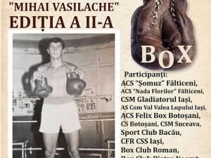"""A doua ediţie a Memorialului """"Mihai Vasilache"""" la box"""