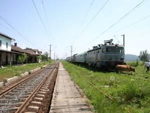 Stația CFR de la Dărmănești