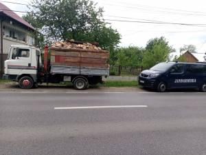 Transport de lemn depistat de un echipaj al jandarmeriei