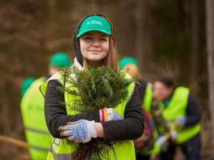 În trei ani au fost plantați peste 600.000 de puieți prin programul de reîmpădurire Pădurea de Mâine