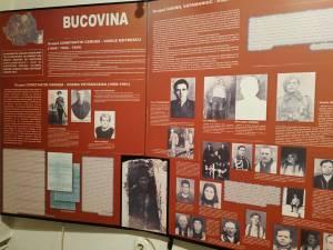 Rezistenţa din munții Bucovinei