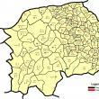 Numărul de cazuri de Covid-19 din fiecare localitate a județului Suceava