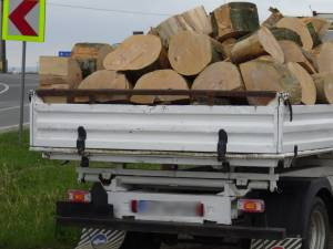 lemn confiscat