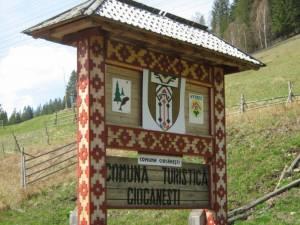 Intrarea în comuna Ciocănești