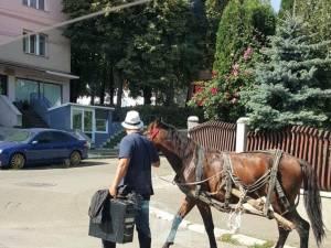 Prins cu căruța în Suceava, a luat calul și-a plecat, neavând bani de amendă